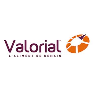 Valorial's logo